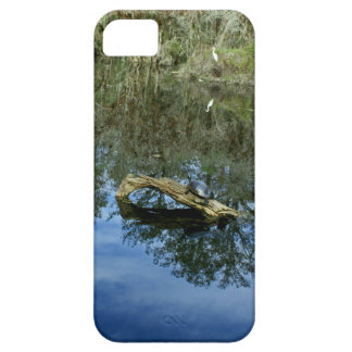 Pop Ash Pond Barely There iPhone 5 Case