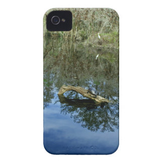Pop Ash Pond iPhone 4 Cases