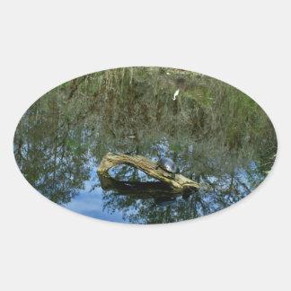 Pop Ash Pond Oval Sticker