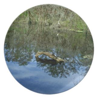 Pop Ash Pond Plate