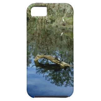 Pop Ash Pond Tough iPhone 5 Case