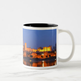 Pope's Palace in Avignon and the Rhone river at Mugs