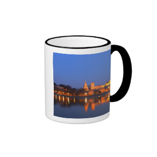 Pope's Palace in Avignon and the Rhone river at Mug