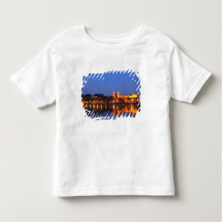 Pope's Palace in Avignon and the Rhone river at T Shirts