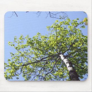 PoplarTree Top and Blue Sky Mouse Pad