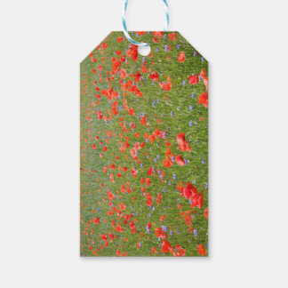 Poppies and Cornflowers Gift Tags