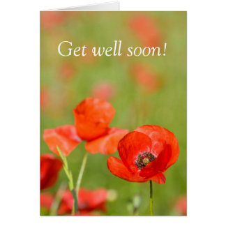 Poppies in a poppy field sympathy card