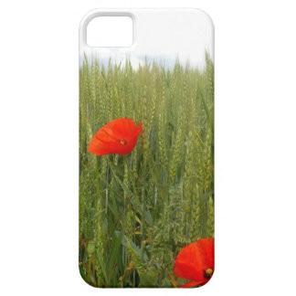 Poppies in a Wheat Field iPhone SE+5/5S Case