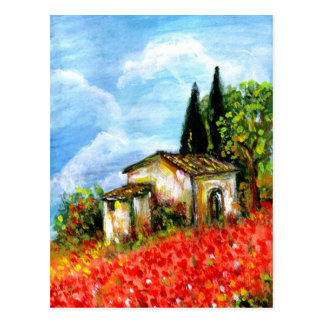 POPPIES IN TUSCANY POSTCARDS