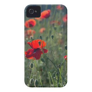 poppies iPhone 4 case