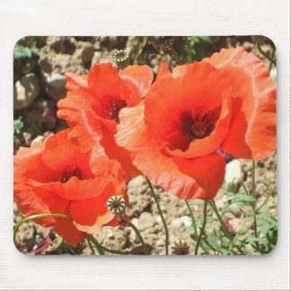 Poppies MouseMat