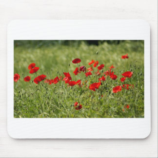Poppies Mousepad