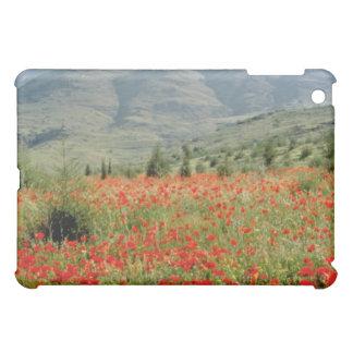 Poppies near Antalya, Turkey flowers Cover For The iPad Mini