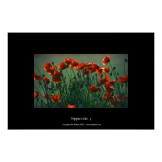 Poppies No. 3 | Large Poster
