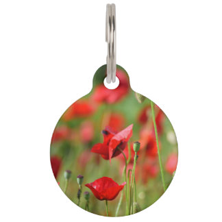 Poppies Pet Name Tag