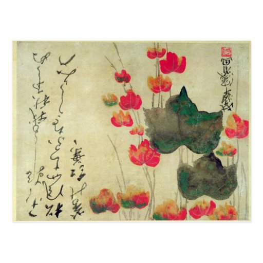 Poppies Postcards