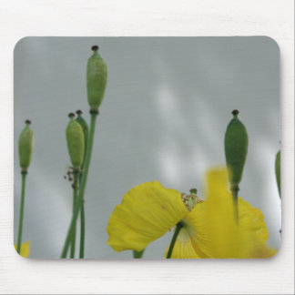 Poppies & shade (1) mouse pad