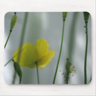 Poppies & shade (3) mouse pad