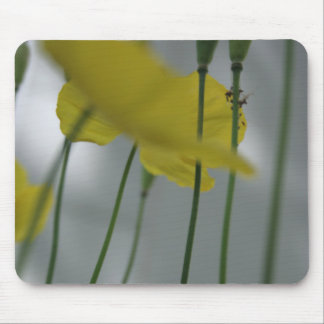 Poppies & shade (8) mouse pad