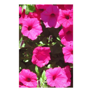 Popping Pink Pansies Personalised Stationery