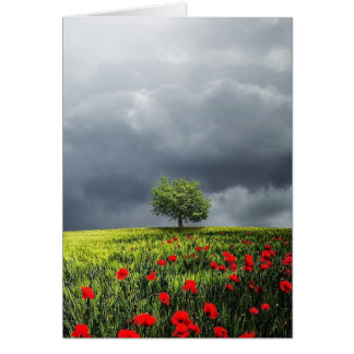 Poppy Field and Cloudy Sky Card