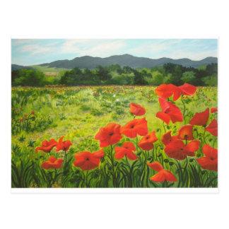 Poppy Field, Belisio, Italy Postcard