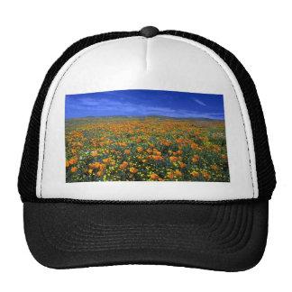 Poppy field trucker hat
