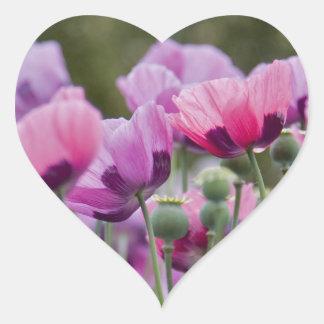 Poppy Field Heart Sticker