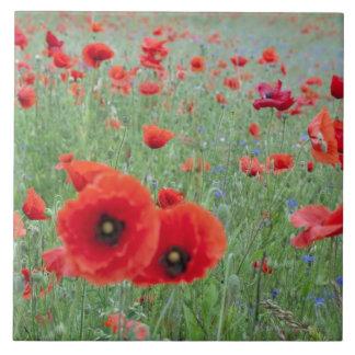 Poppy field in Vernon. Large Square Tile