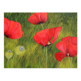 Poppy field postcard