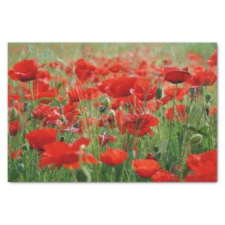 Poppy Field Tissue Paper