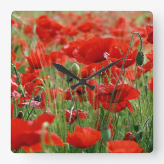Poppy Field Wallclocks