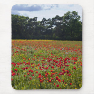 Poppy Fields I mouse mat Mouse Pad