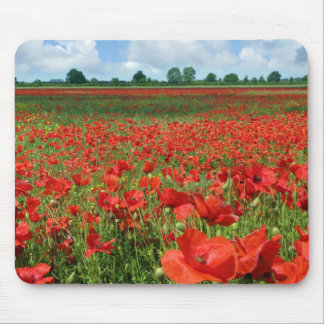 Poppy Fields Mouse Pad