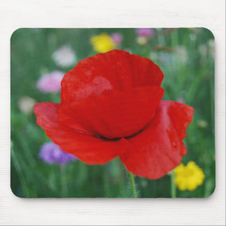 Poppy flower and meaning mouse pad
