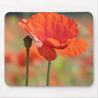 Poppy flower mousepads