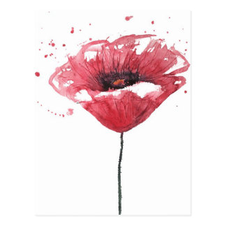Poppy flower, watercolor postcard