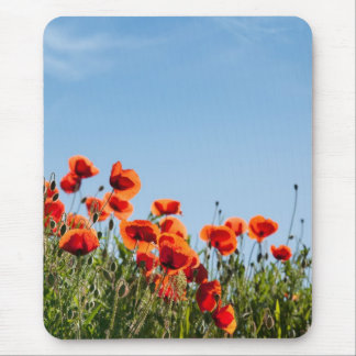 Poppy Flowers Mouse Pad