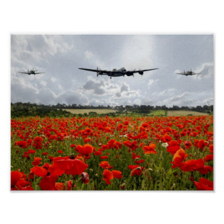 Poppy Flypast Posters