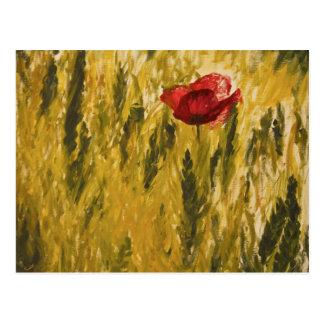 Poppy in the Wheat Field Postcard