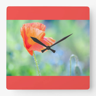 Poppy in the wind square wall clock