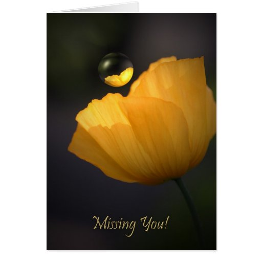 Poppy Missing you text card