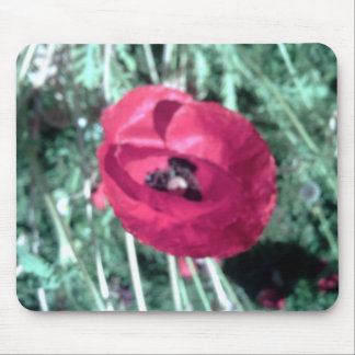 poppy mouse mat