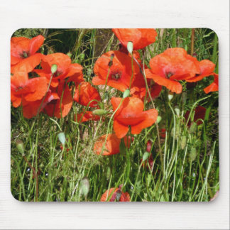 Poppy Mouse Pads