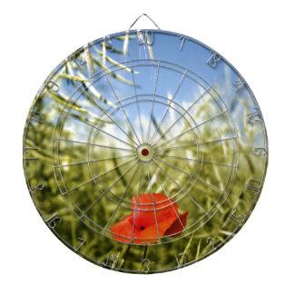 Poppy on a rape field dartboards