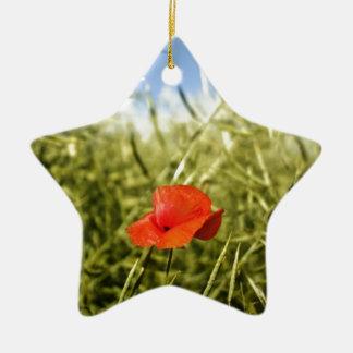 Poppy on a rape field ornament