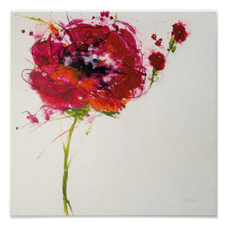 Poppy on White Poster