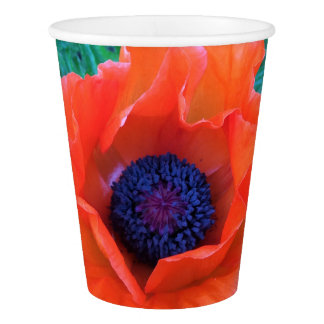 POPPY Oriental Red Orange --- Paper Cup