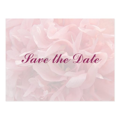 Poppy Petals Save the Date Postcards