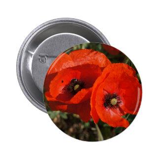 Poppy Photography Badge
